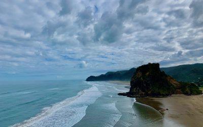 The Tasman Lookout Track | The Best Piha Beach Viewpoint