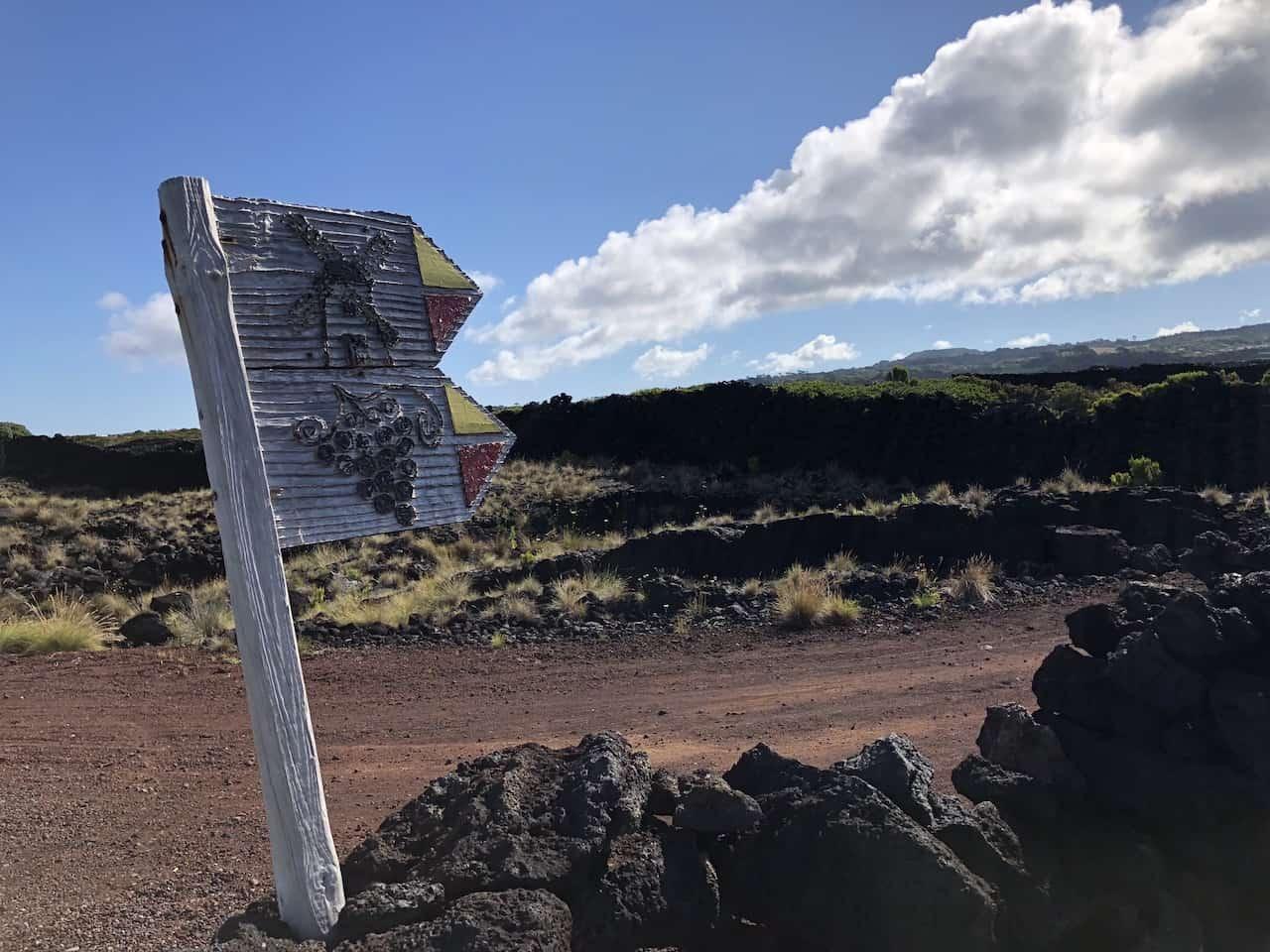 Trail Signs Pico