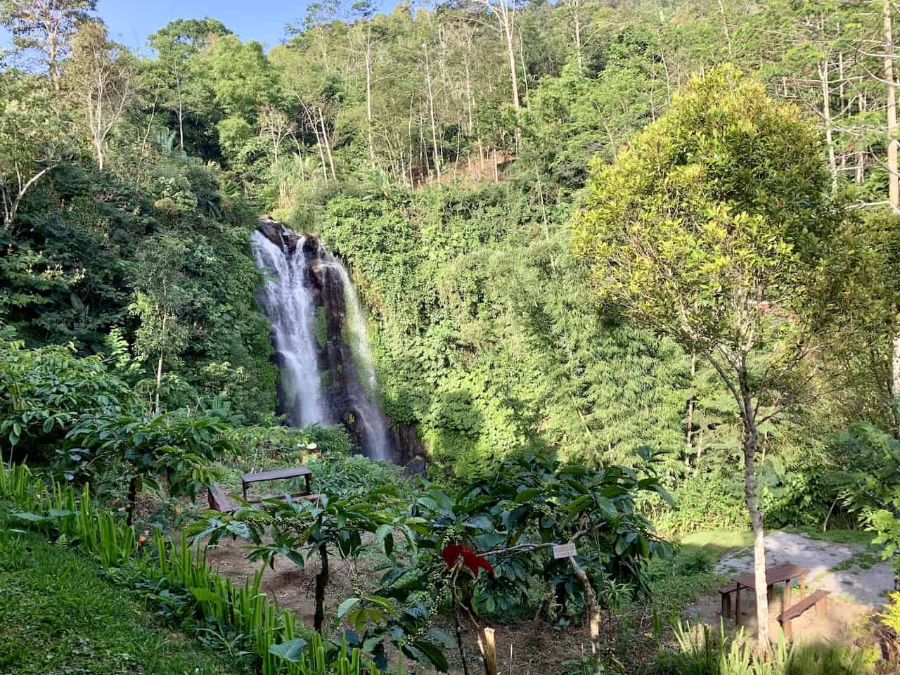 Golden Valley Waterfall Eco Cafe