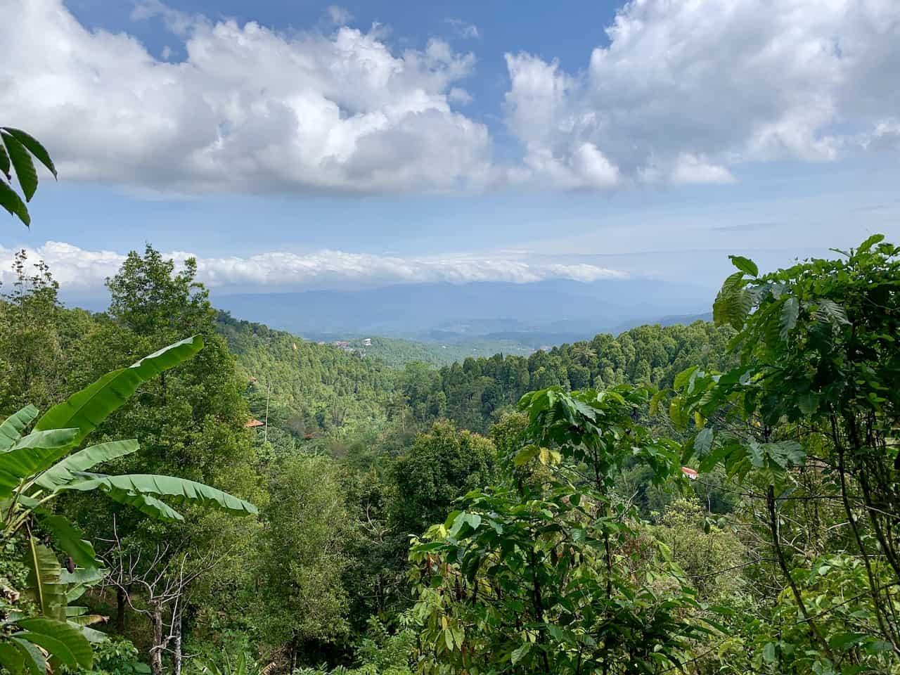 Munduk Bali Views
