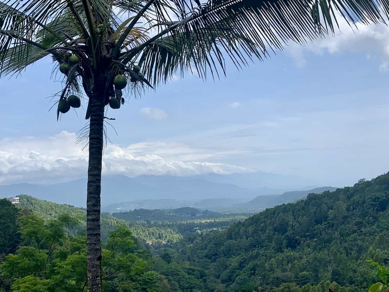 Views of Munduk Jungle