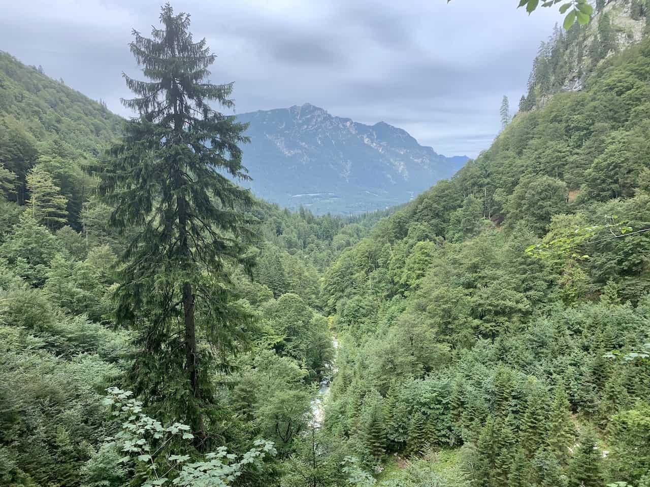 Höllentalklamm Gorge Forest