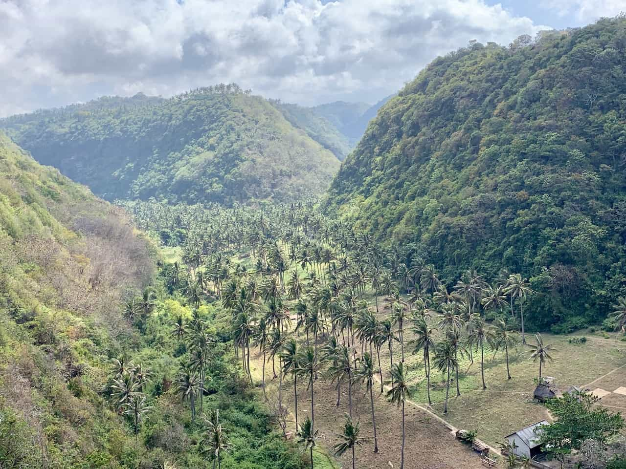 Nusa Penida Greenery