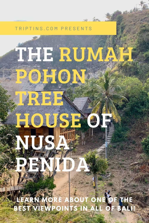 Rumah Pohon Treehouse Nusa Penida