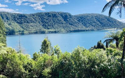 A Visit to the Blue and Green Lakes Rotorua Lookout Viewpoint