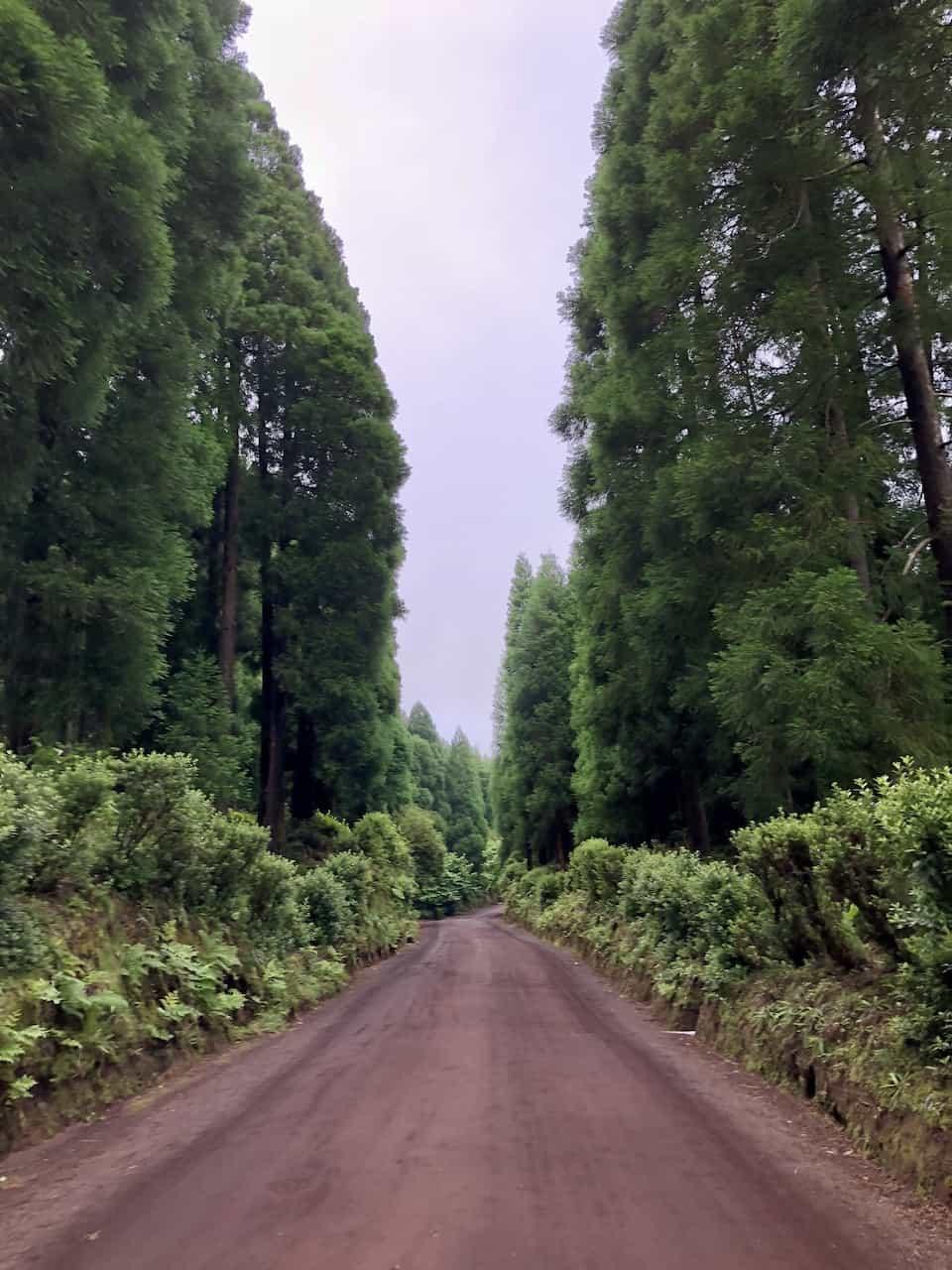 Path to Miradouro da Boca do Inferno