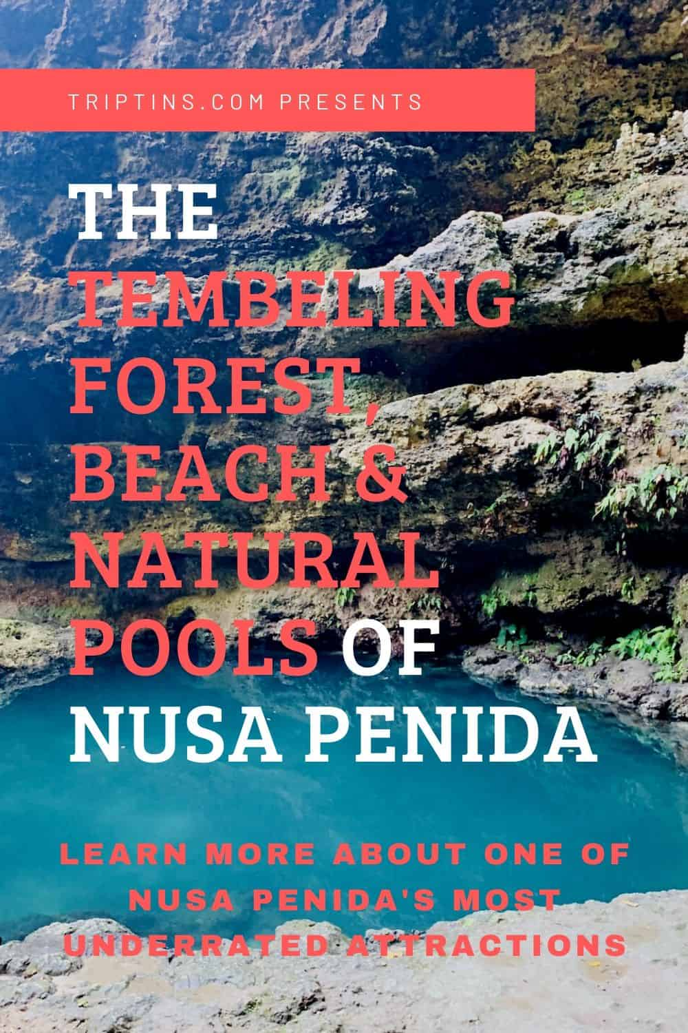 Tembeling Forest Beach Pools