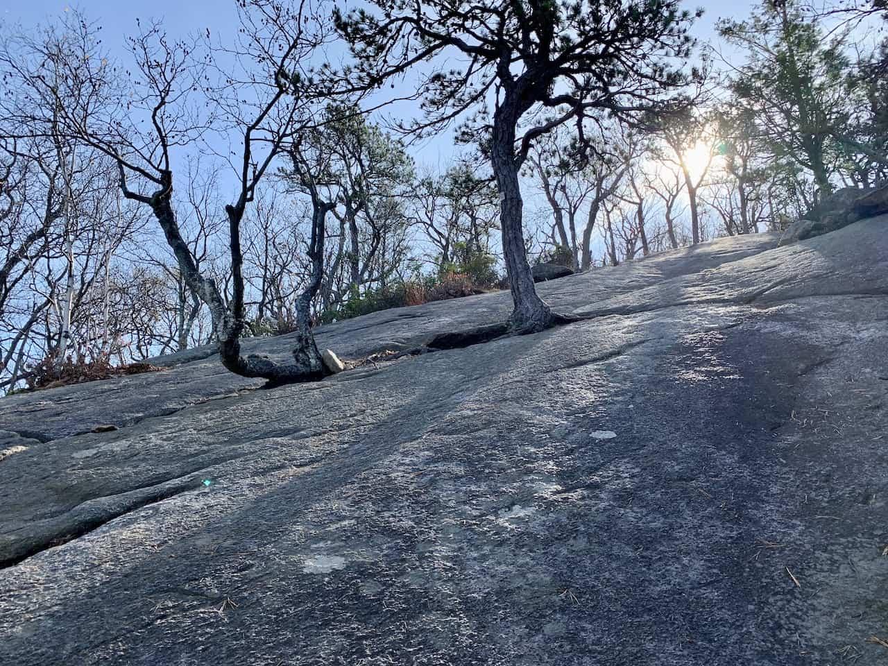 Bear Mountain Hiking Terrain