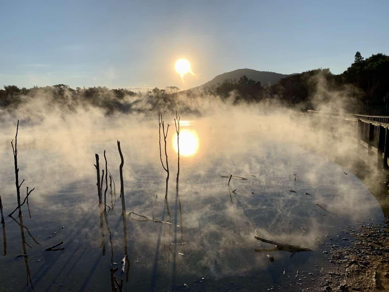 Kuirau Park in Rotorua