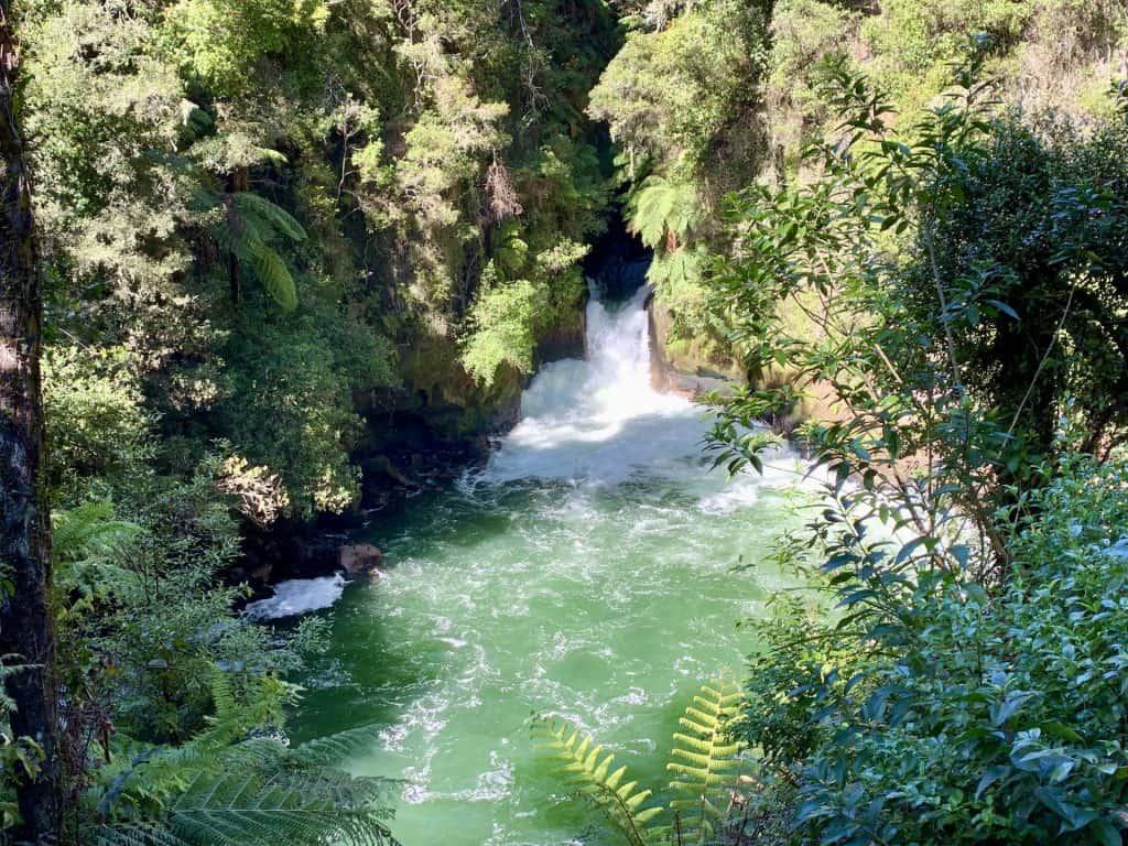 Okere Falls Walk
