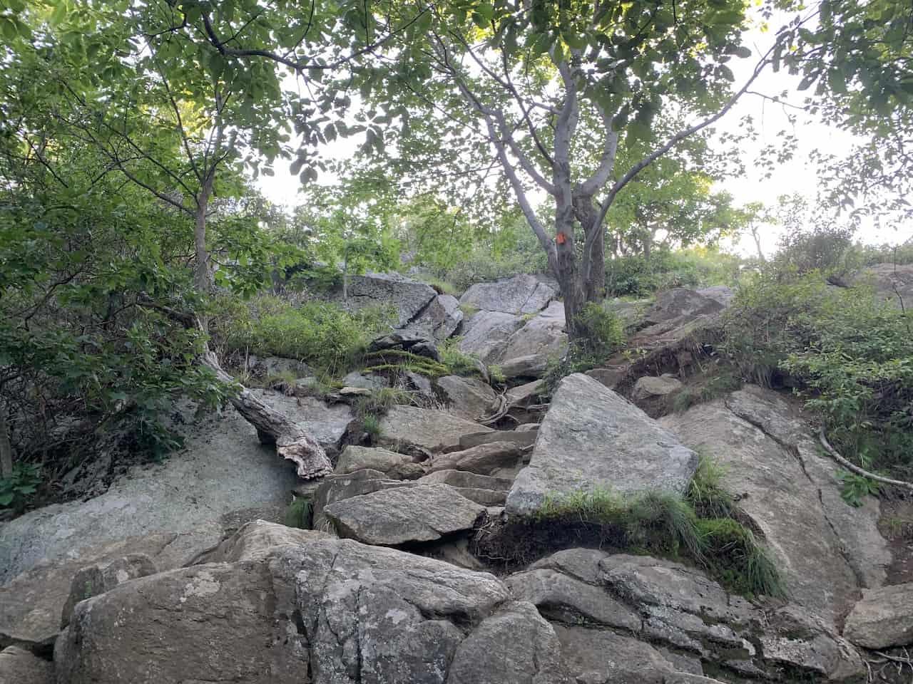 Storm King Mountain Orange Trail
