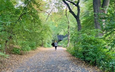 How to Walk & Run the Central Park Bridle Path