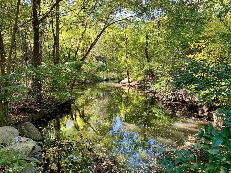 Central Park Trails
