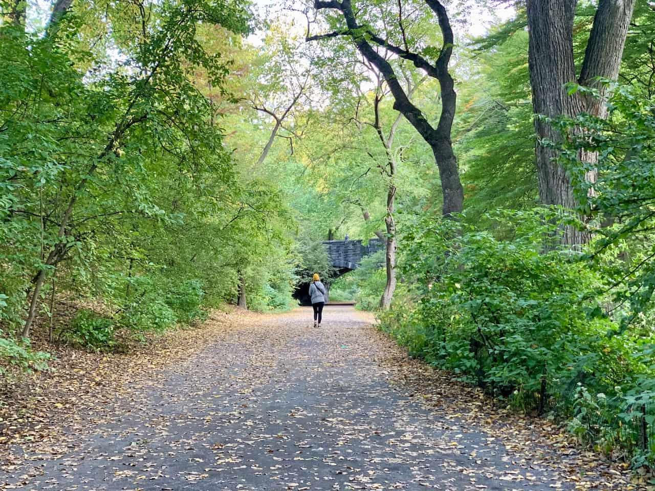 Central Park Walking Path