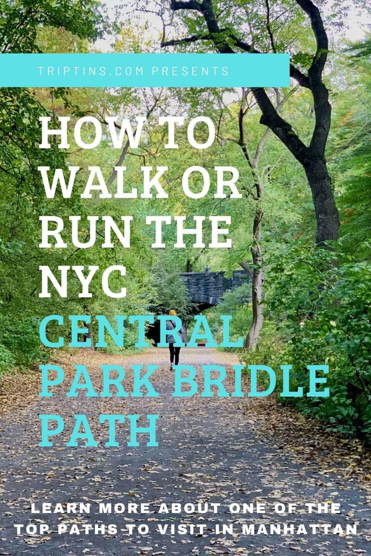 NYC Bridle Path Central Park