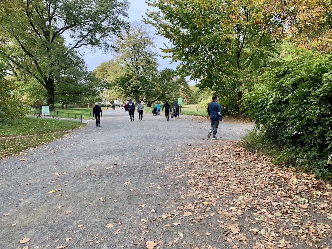 North Meadow Bridle Path Turn