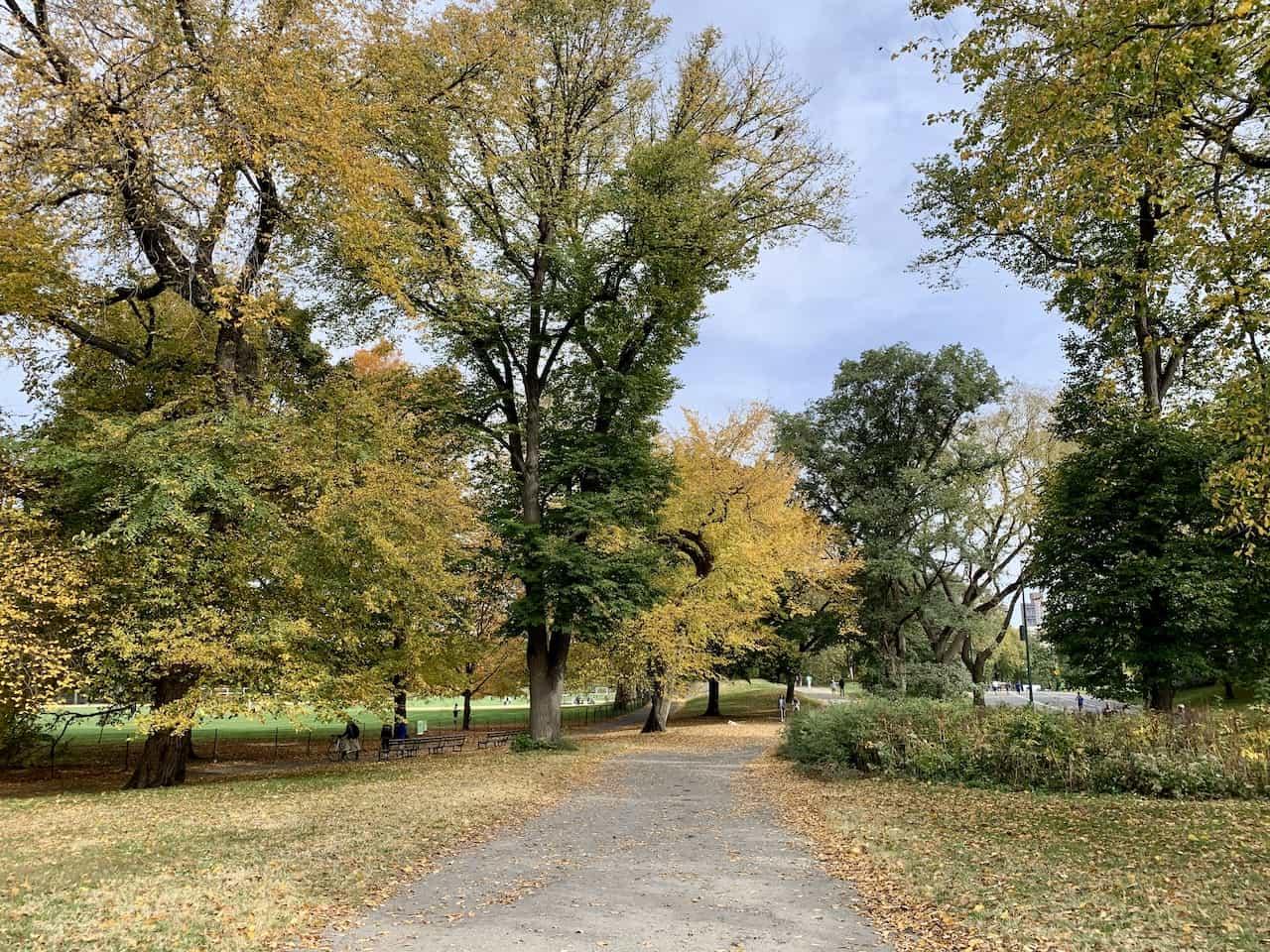 North Meadow Bridle Path