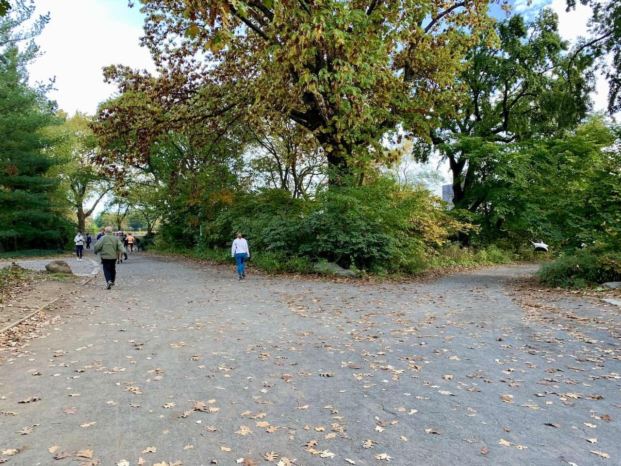 Reservoir Bridle Path