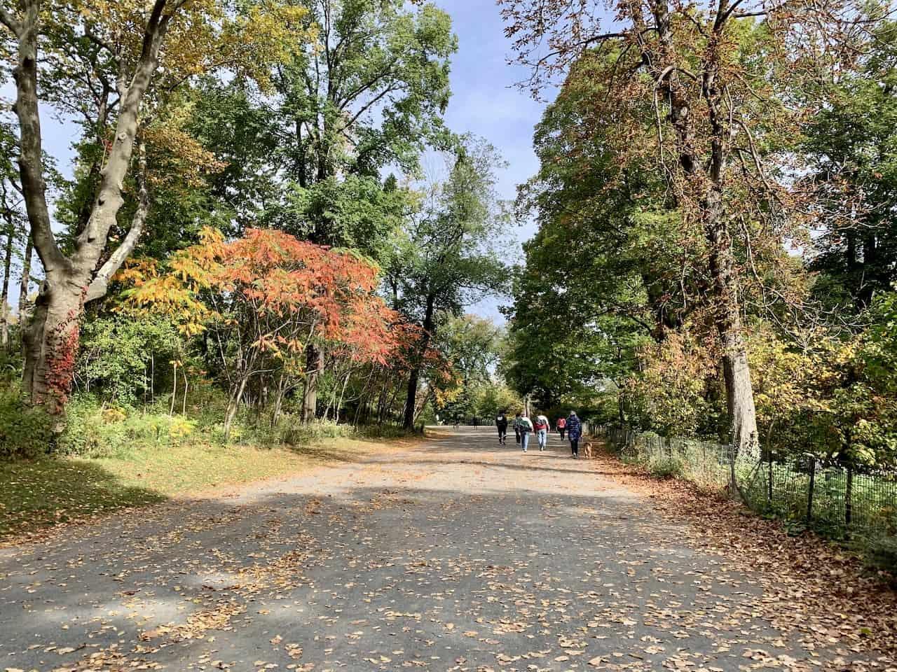 Reservoir NYC Path
