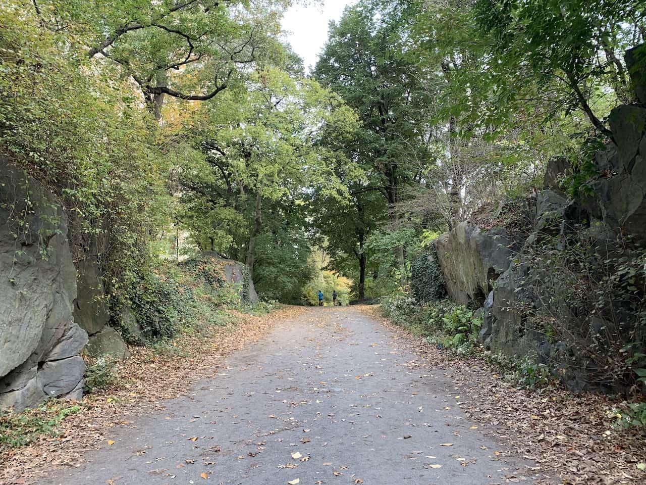 Runners Grove