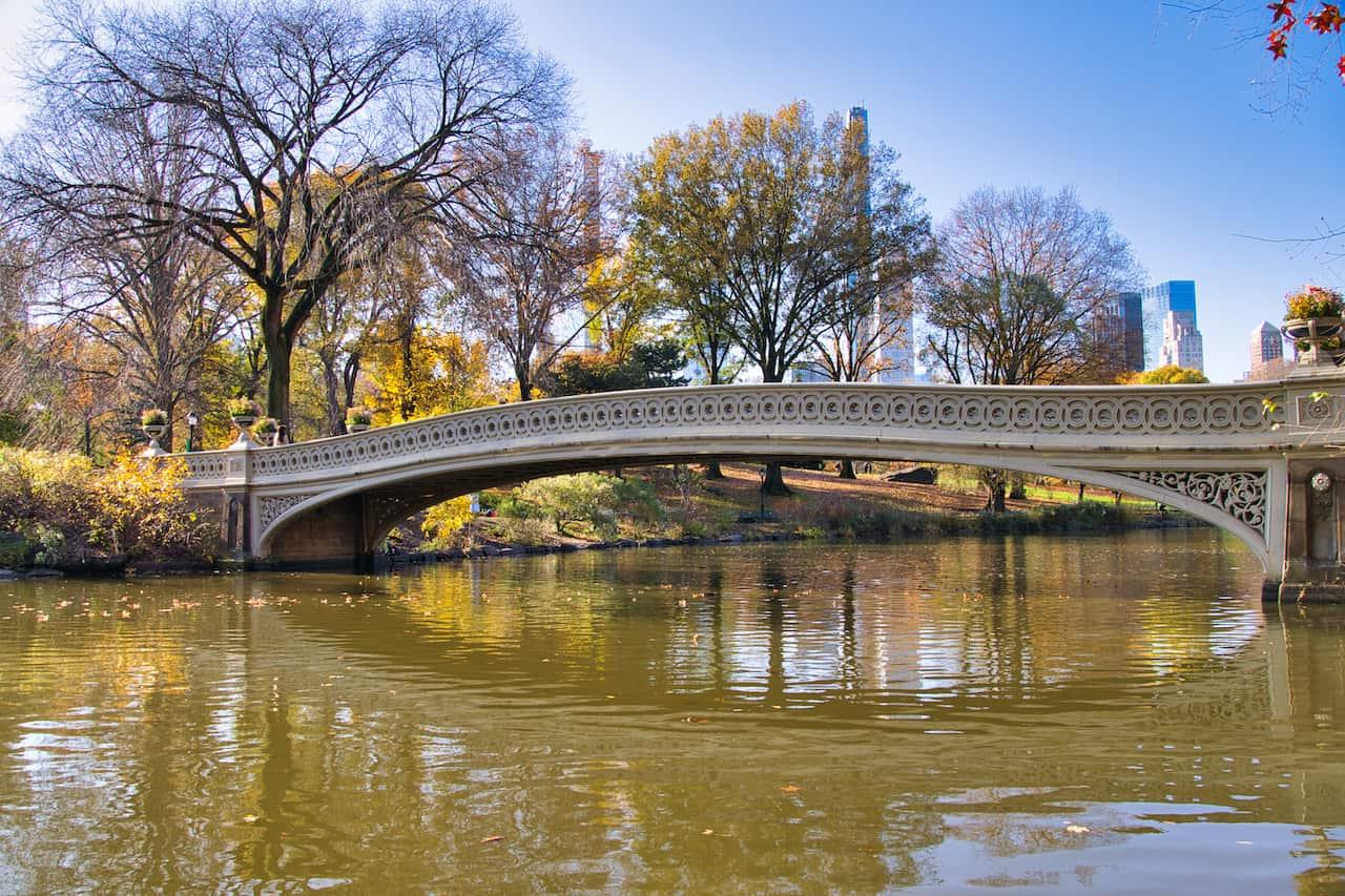 Central Park Manhattan Lake Reflection