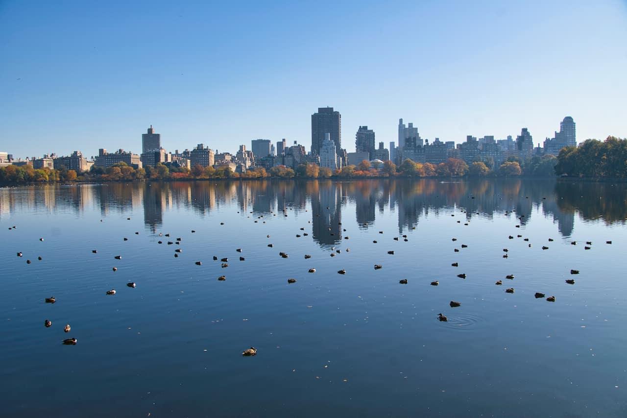 Running Loop Central Park Reservoir