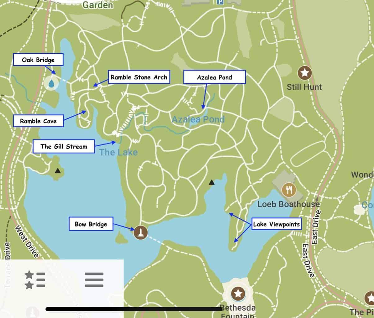 Central Park Ramble Map