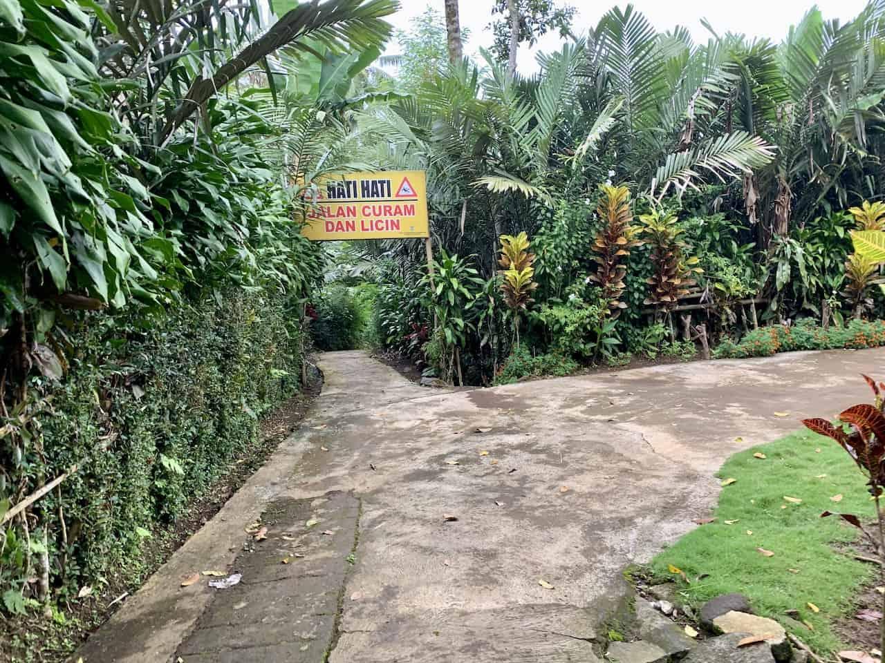Kabut Pelangi Path