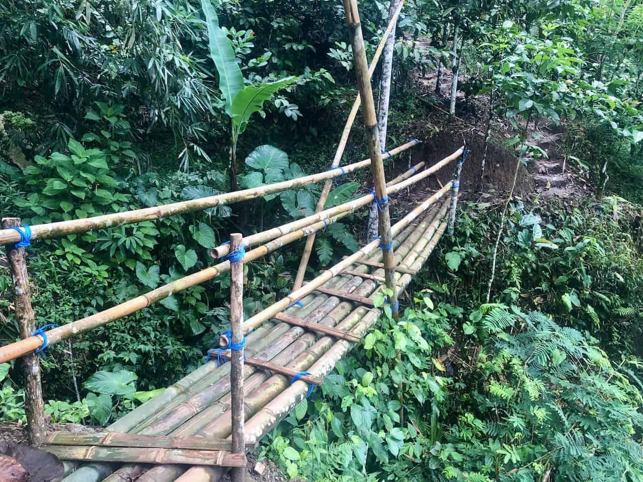 Bamboo Bridge Hiking