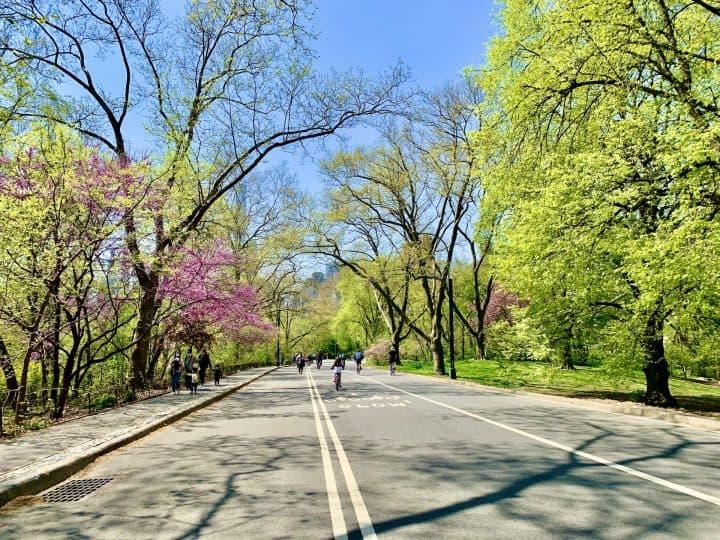Running, Biking & Walking the Central Park Full Loop
