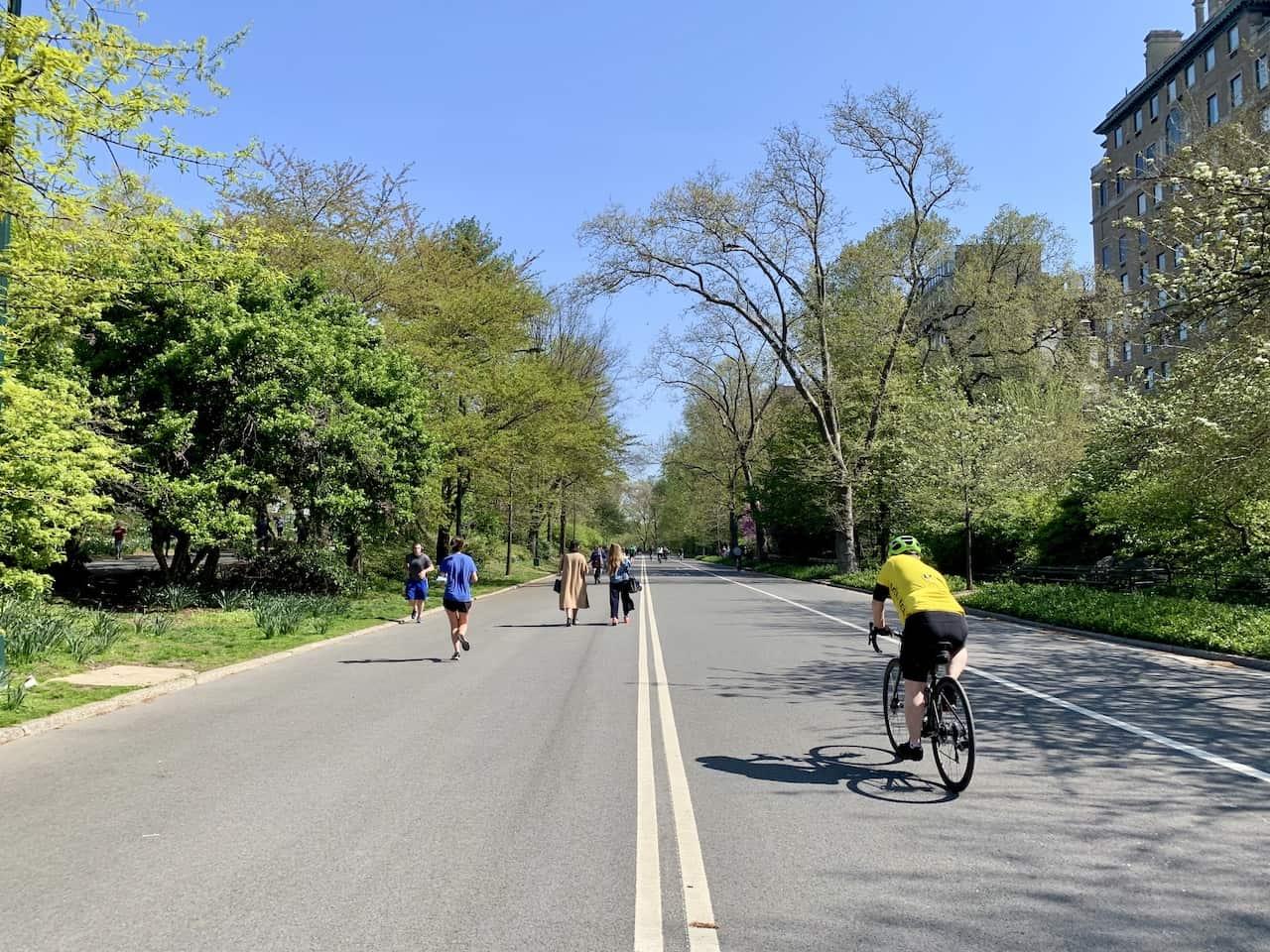 East Drive Central Park