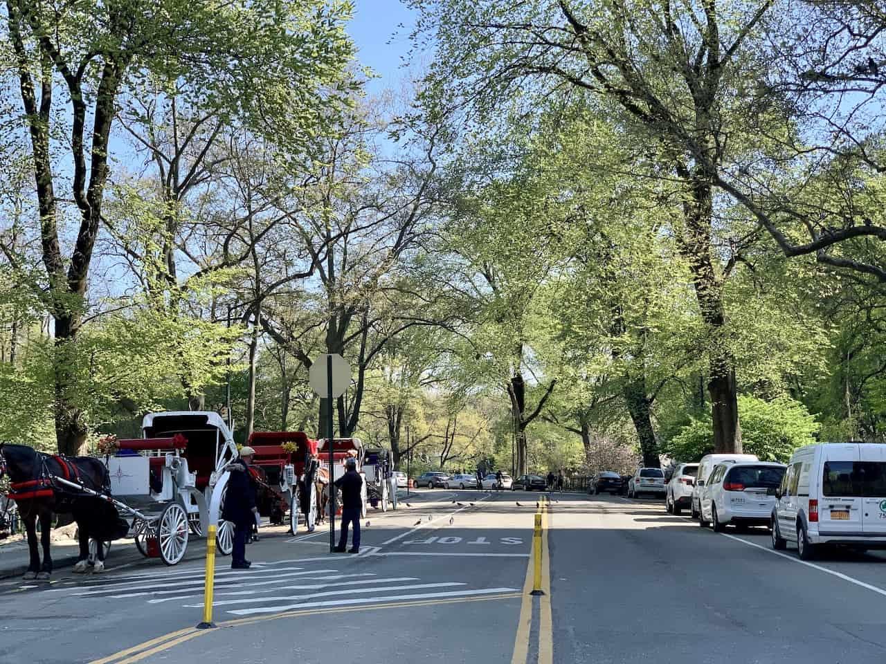 Grand Army Plaza Central Park