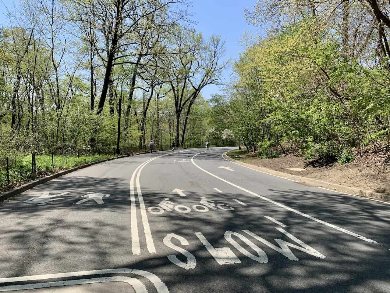 Pedestrian and Bicycle Lanes Central Park