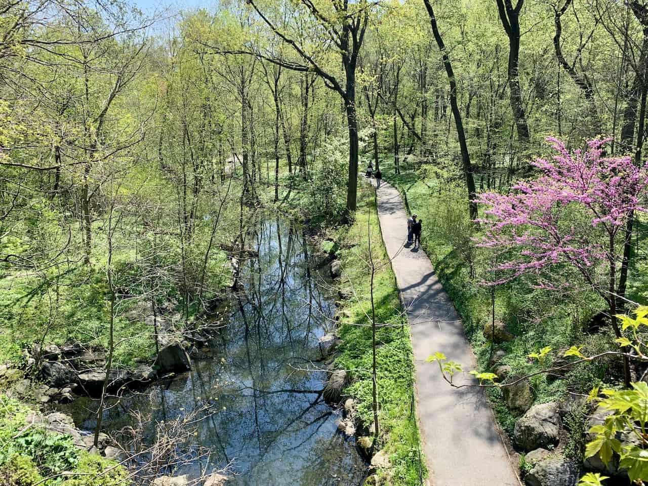 The Ravine Central Park