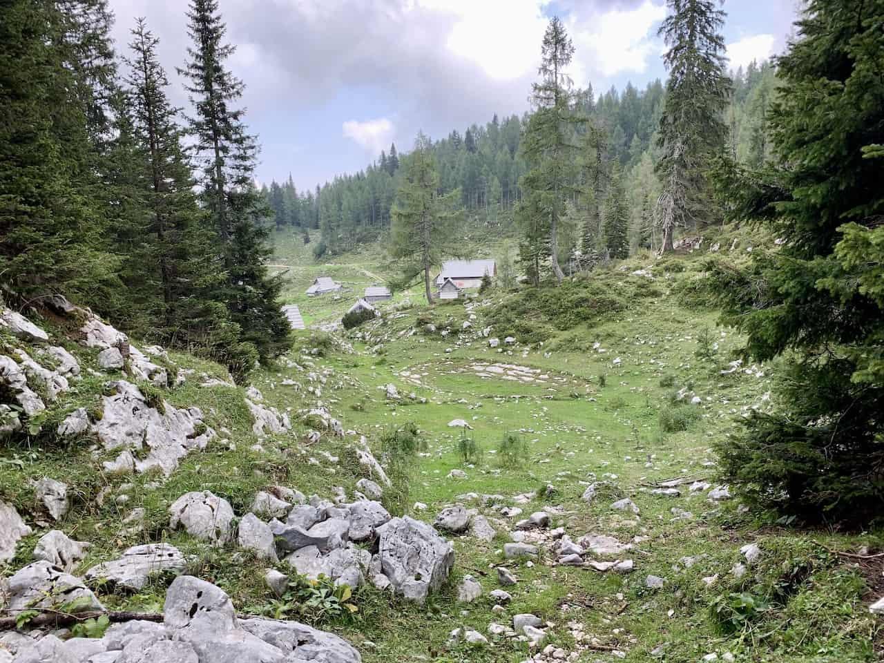 Planina Dedno Polje Farm