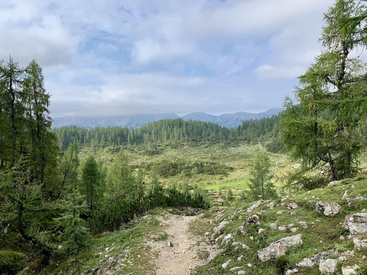 Planina Ovcarija Hike