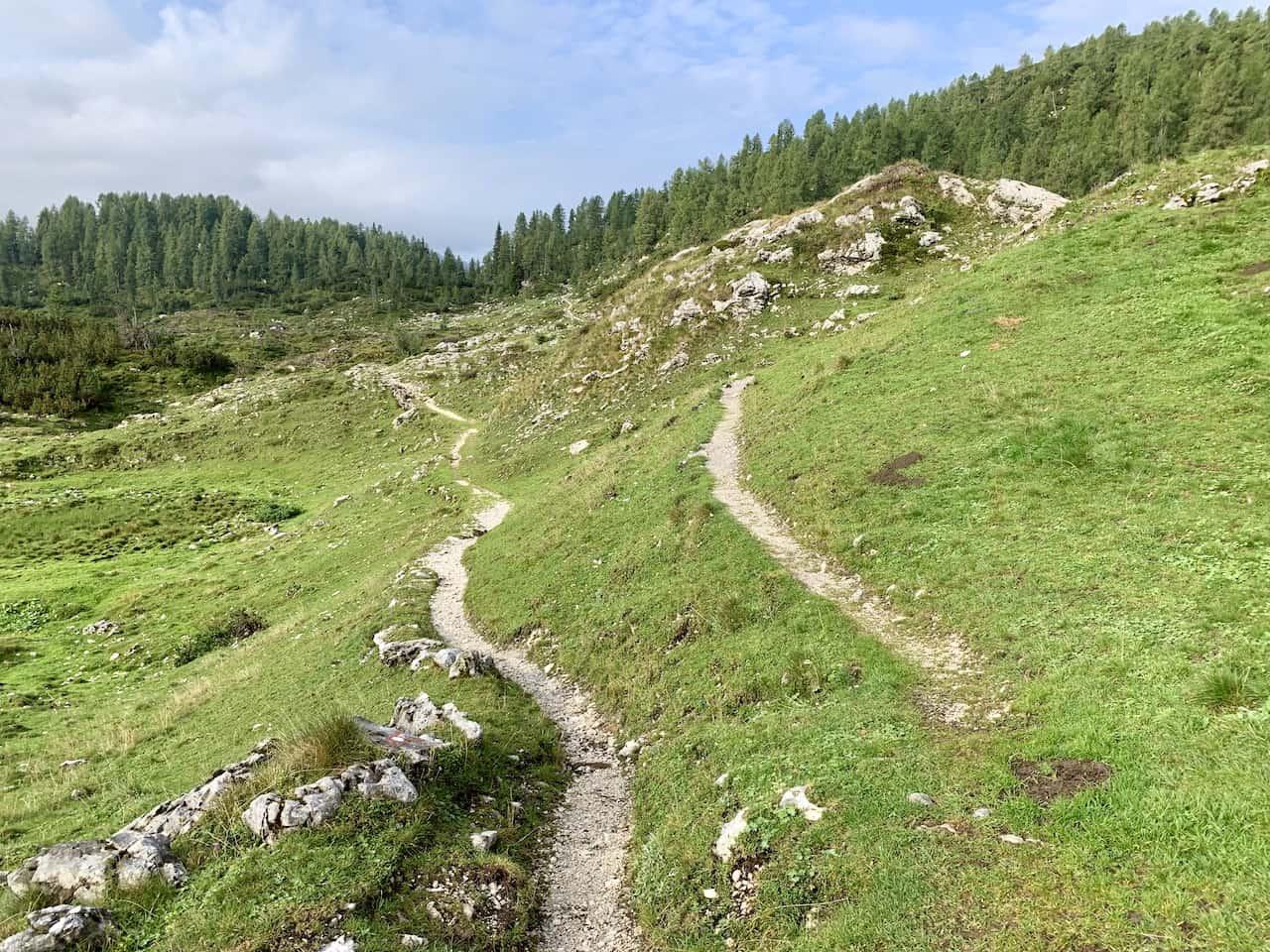Planina Ovcarija Slovenia