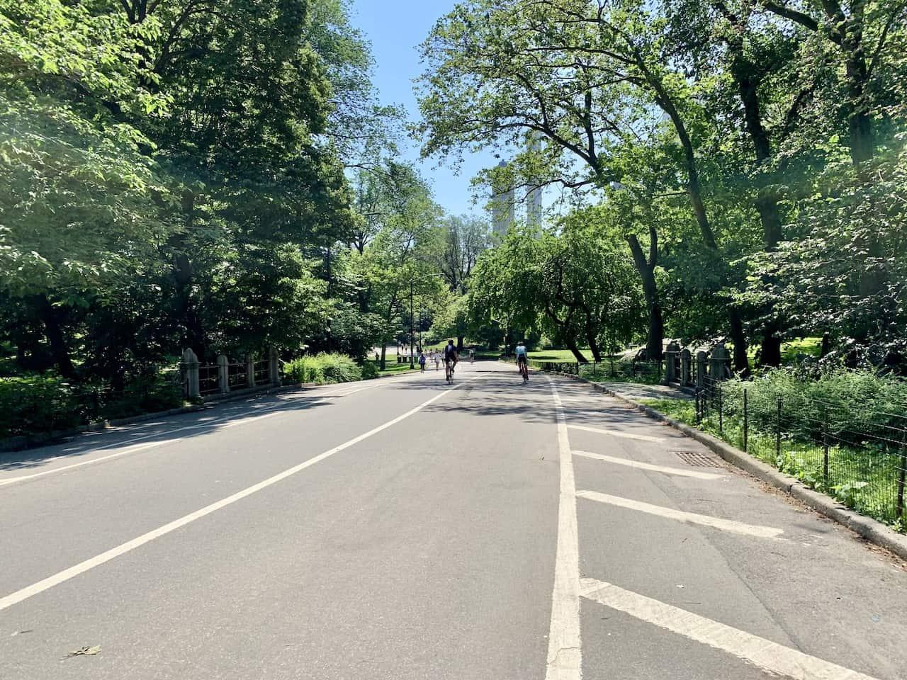 Center Drive Central Park
