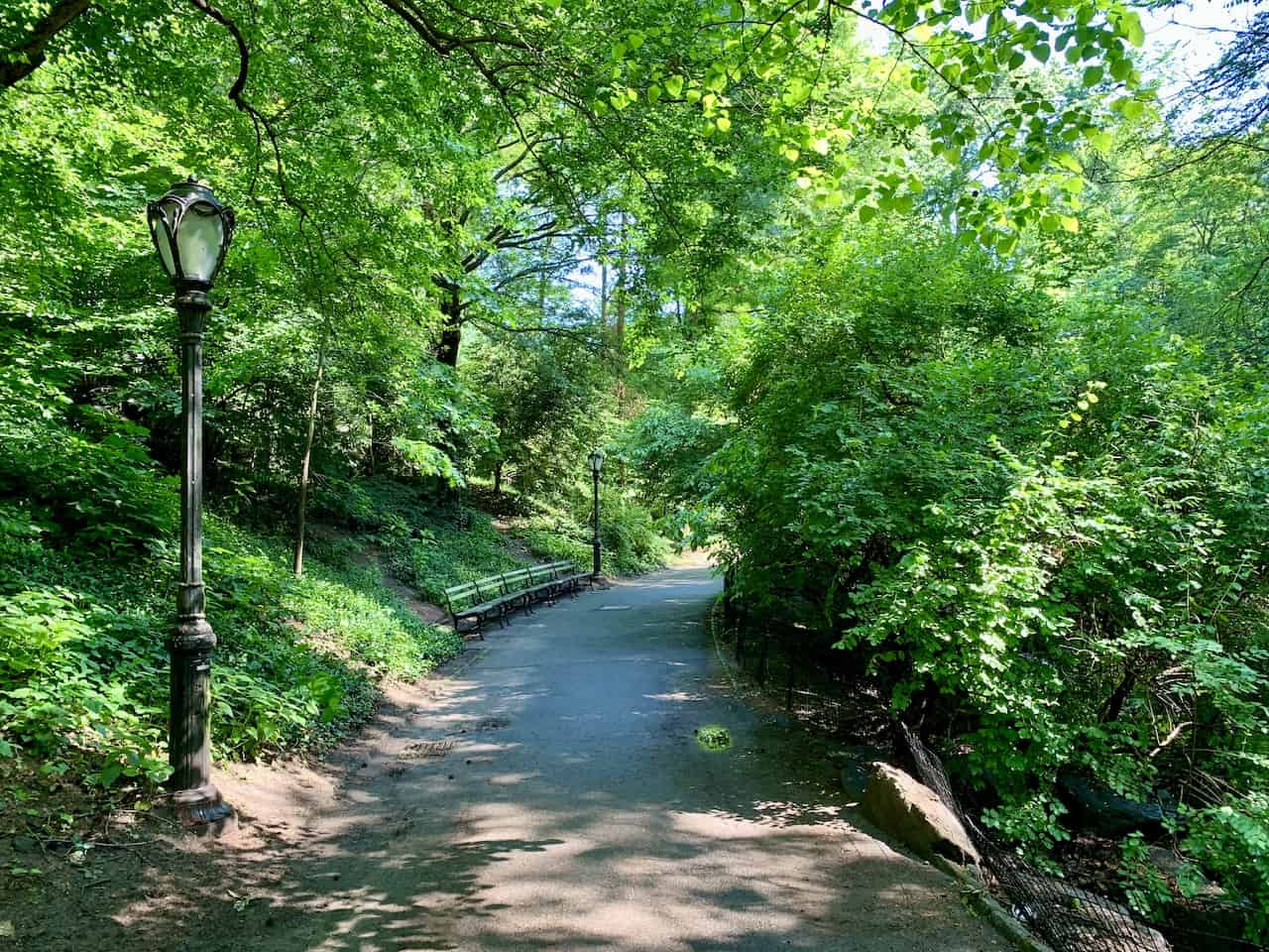 Central Park Greenery Sanctuary