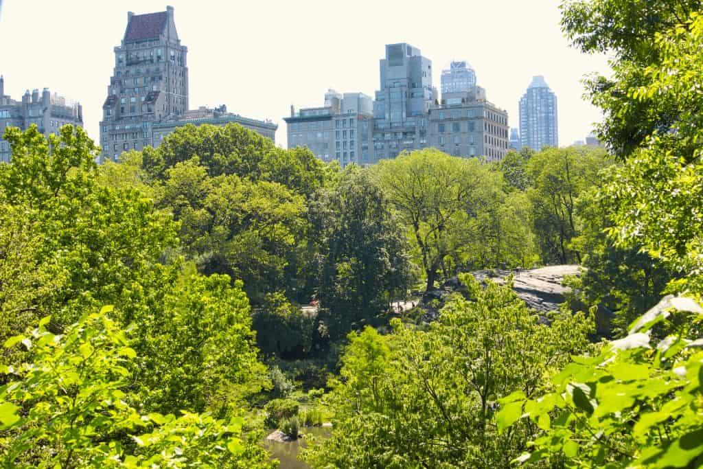 Hallett Nature Sanctuary Central Park