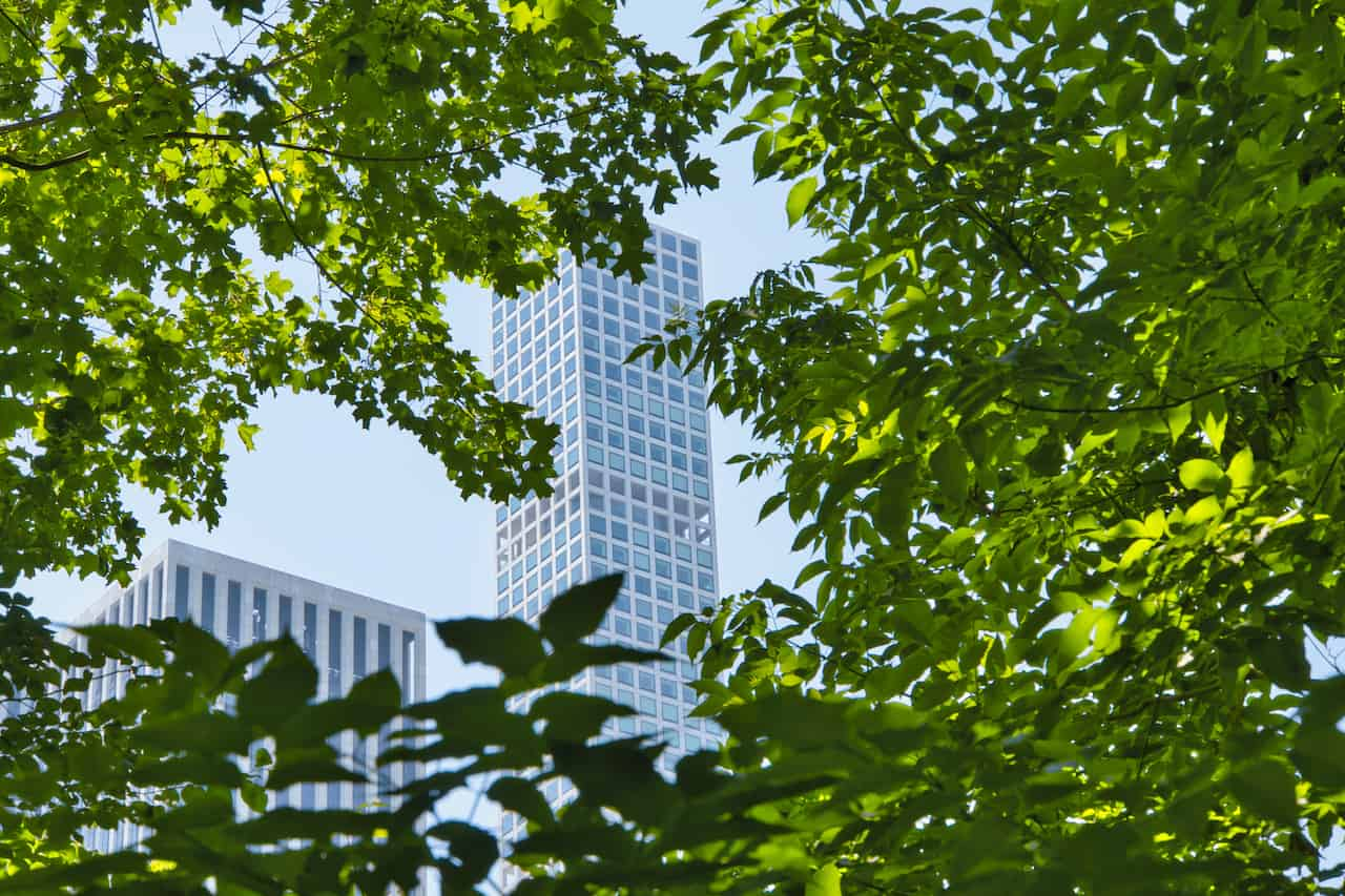 Hallett Nature Sanctuary Central Park View