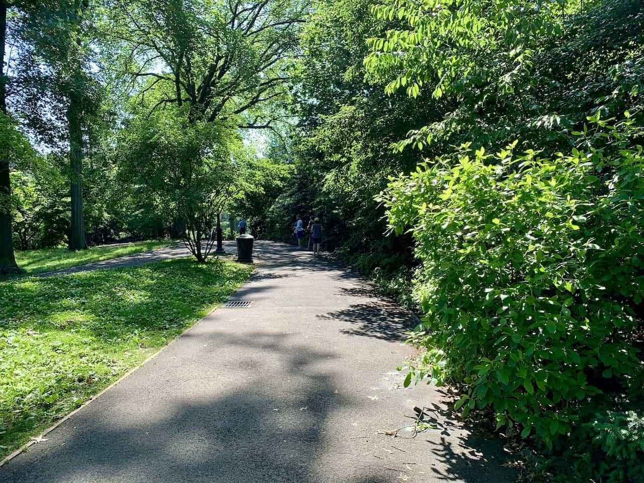Hallett Nature Sanctuary Entrance Path