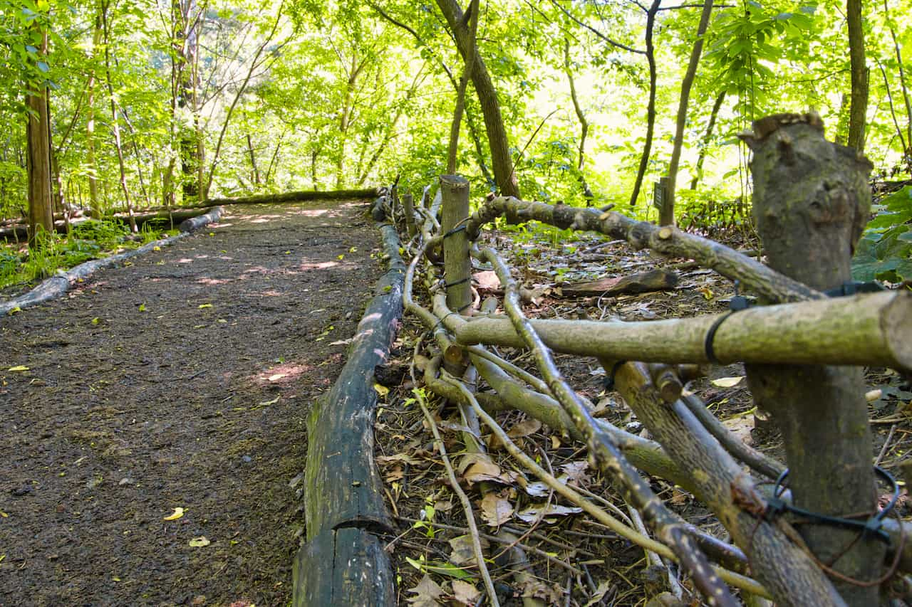 Hallett Nature Sanctuary Trees