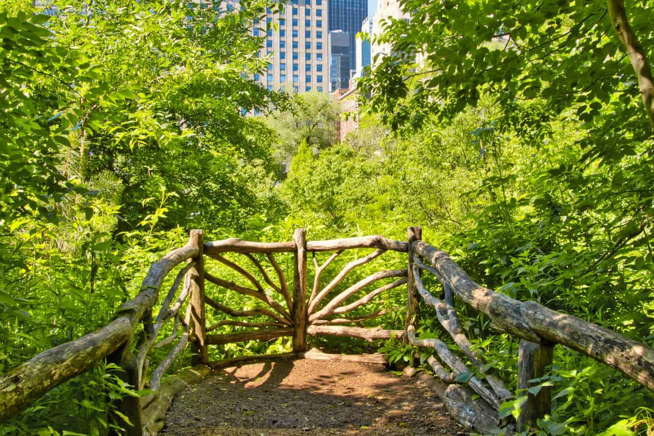 Hallett Viewpoint Central Park