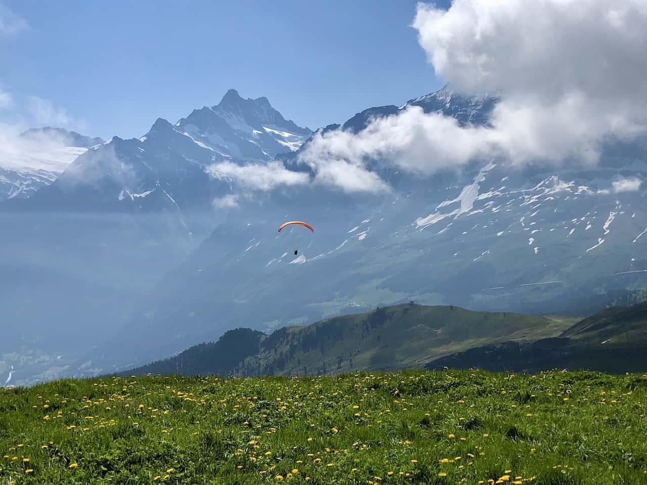 Mannlichen Paraglider