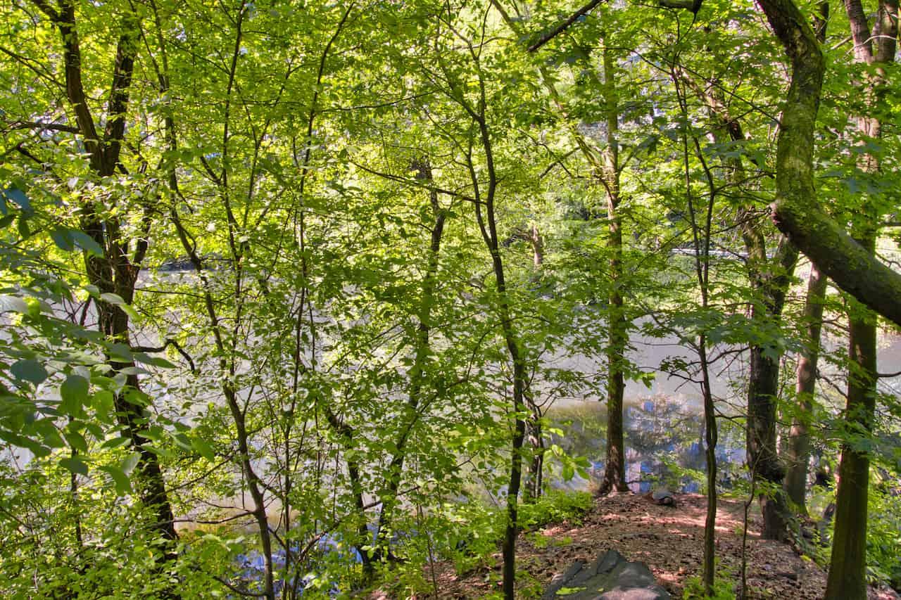 Pond Viewpoint Hallett