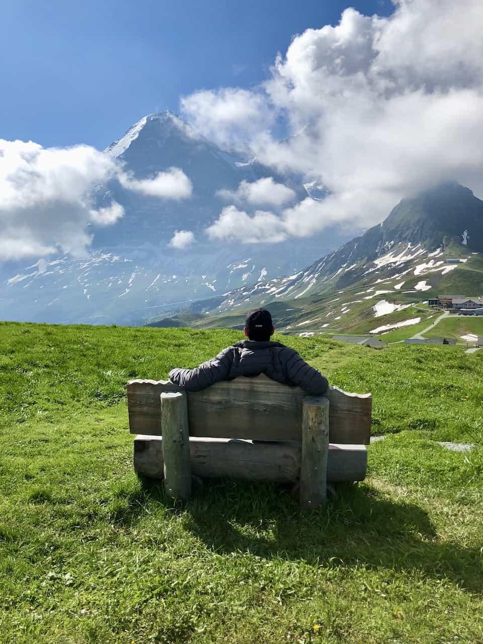 The Eiger View Mannlichen