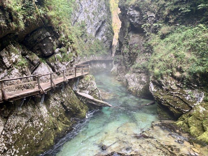 A Complete Vintgar Gorge Slovenia Guide