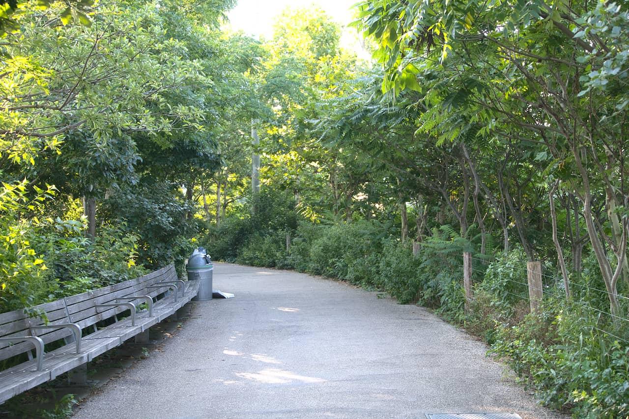 Walking Paths Brooklyn