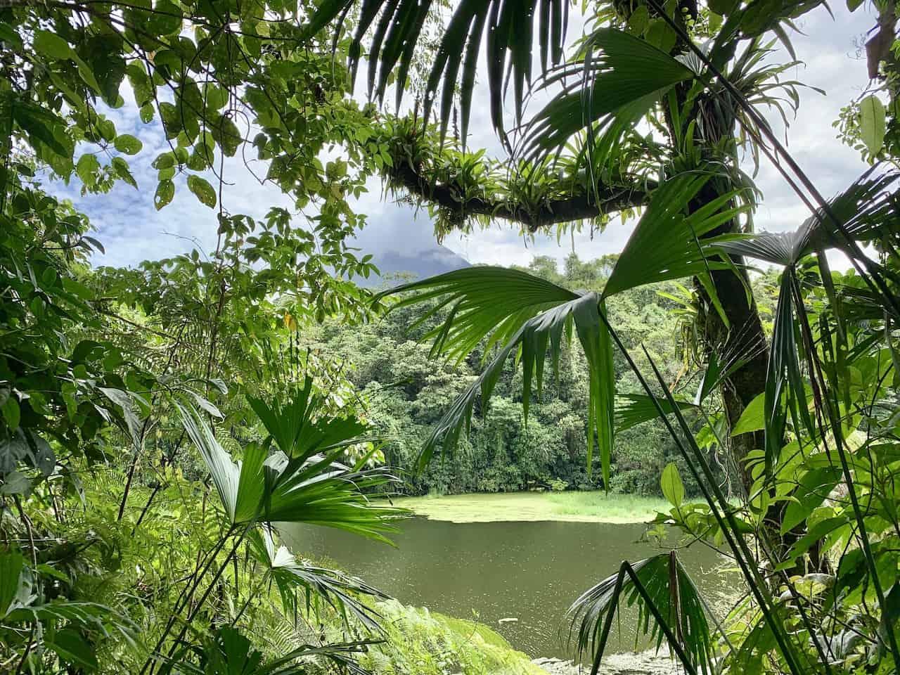 Lago Los Patos Arenal
